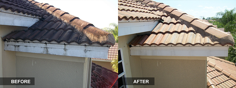 Residential Roof and Exterior Cleaning from the Mallard Systems Experts